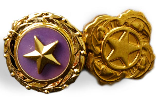 Gold Star and Next of Kin Deceased Personnel Lapel Pins