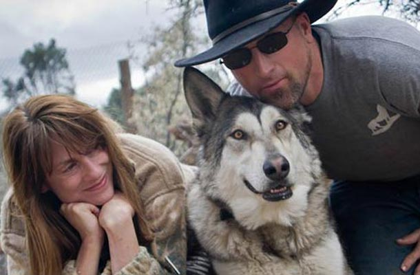 Veterans with PTSD getting wolf therapy
